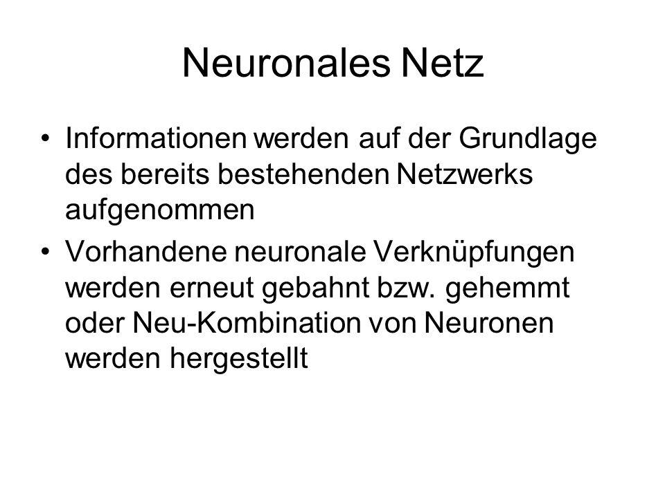 Neuronales Netz Informationen werden auf der Grundlage des bereits bestehenden Netzwerks aufgenommen.
