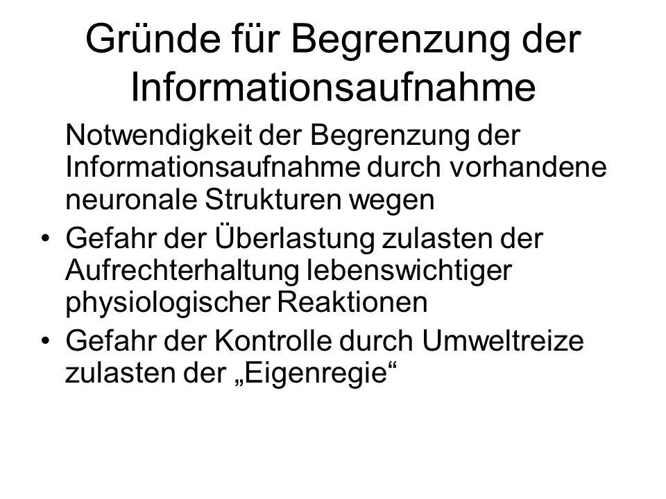 Gründe für Begrenzung der Informationsaufnahme
