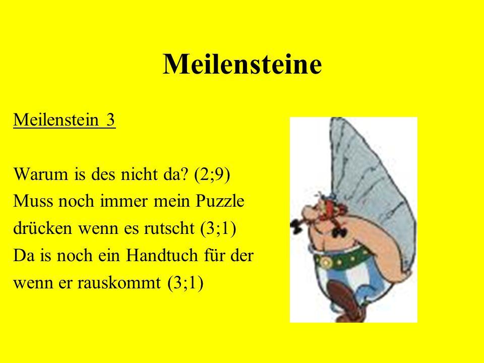 Meilensteine Meilenstein 3 Warum is des nicht da (2;9)