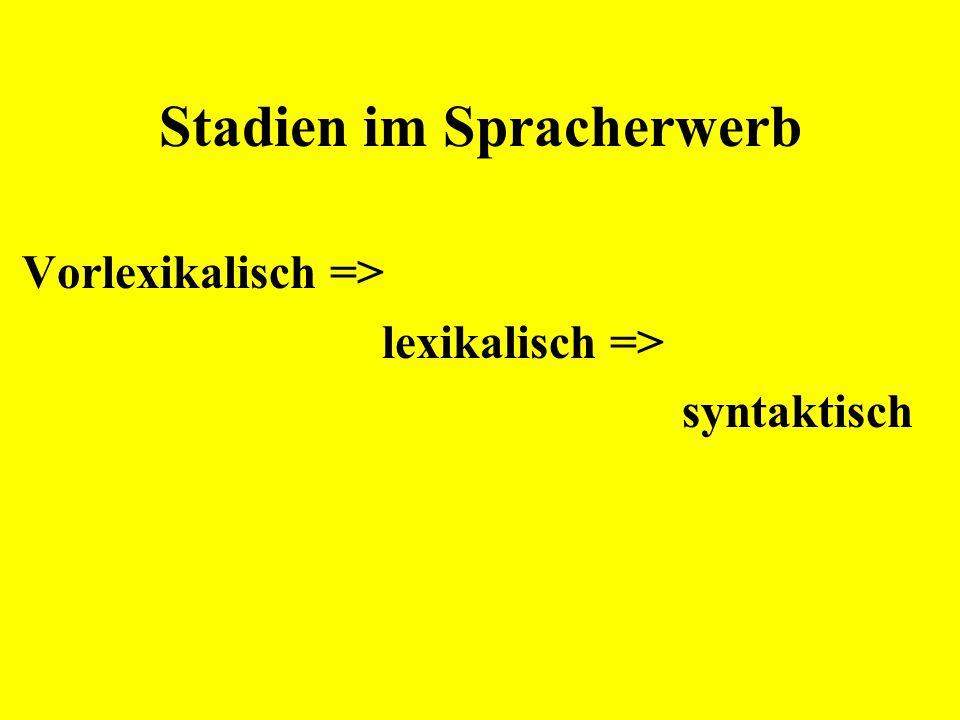 Stadien im Spracherwerb