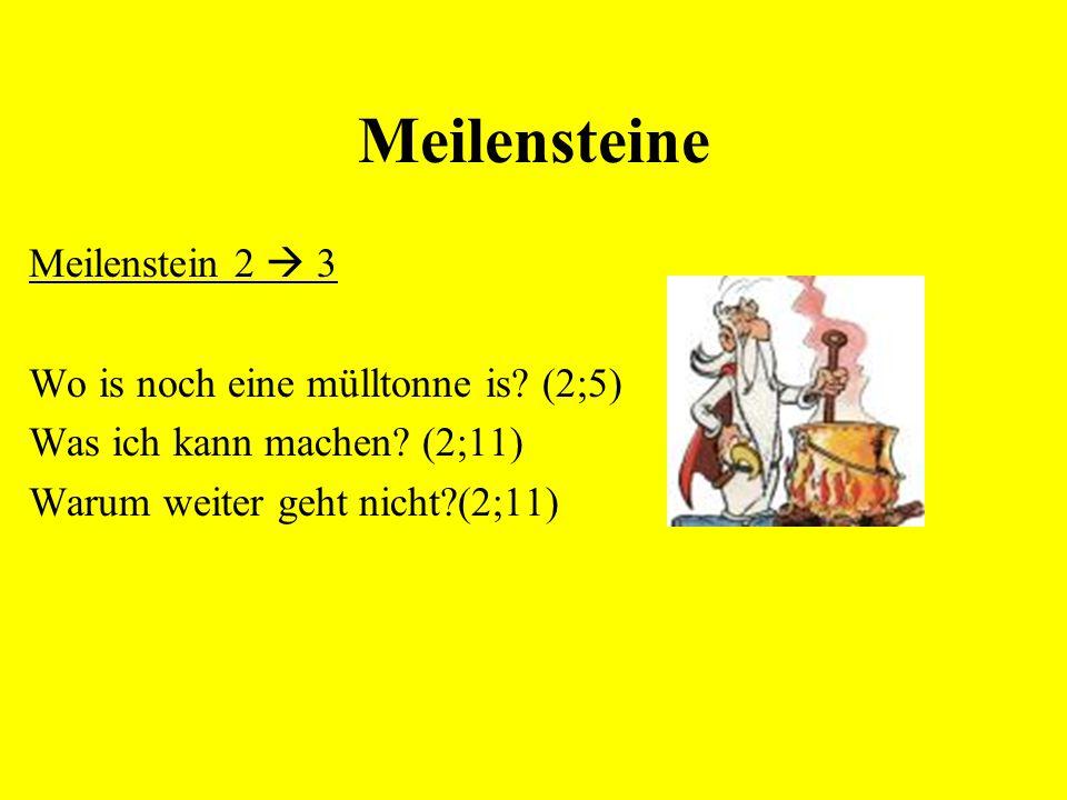 Meilensteine Meilenstein 2  3 Wo is noch eine mülltonne is (2;5)