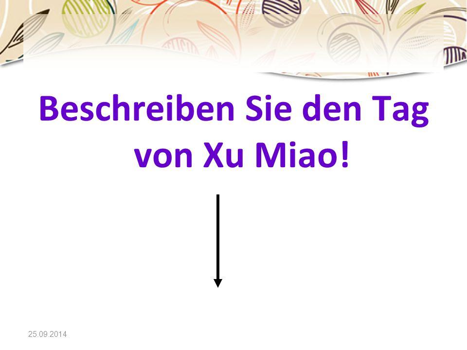 Beschreiben Sie den Tag von Xu Miao!