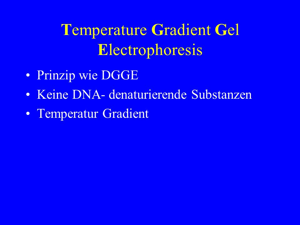 Temperature Gradient Gel Electrophoresis