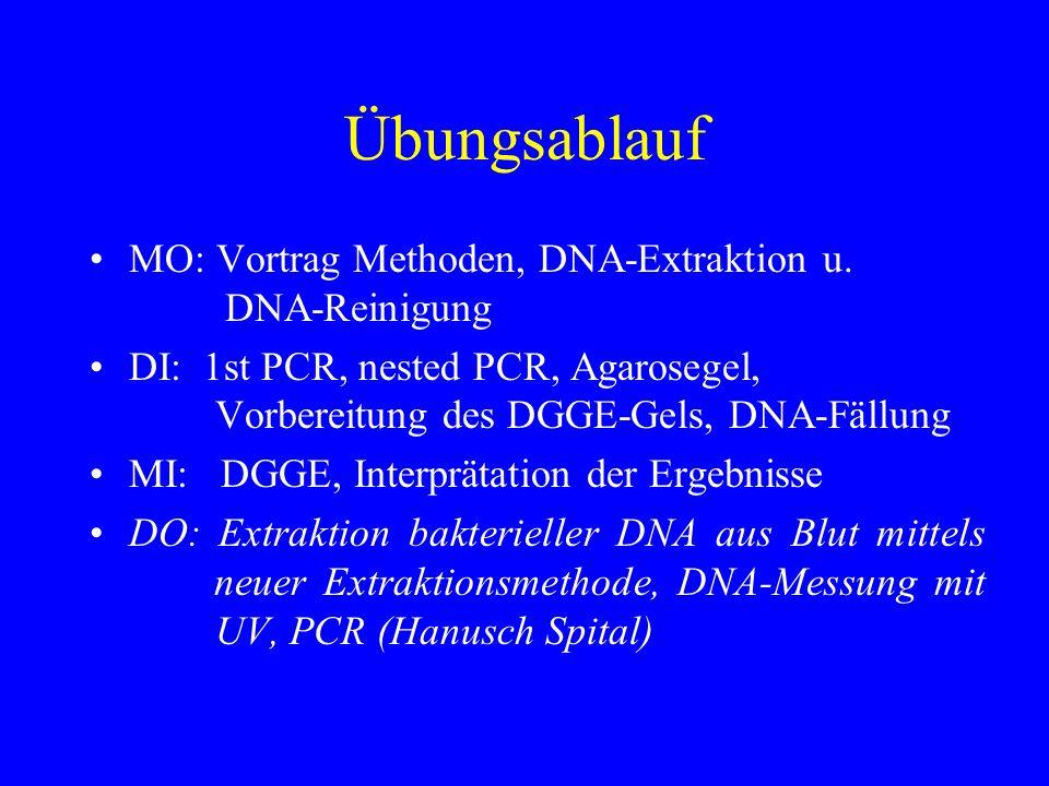 Übungsablauf MO: Vortrag Methoden, DNA-Extraktion u. DNA-Reinigung