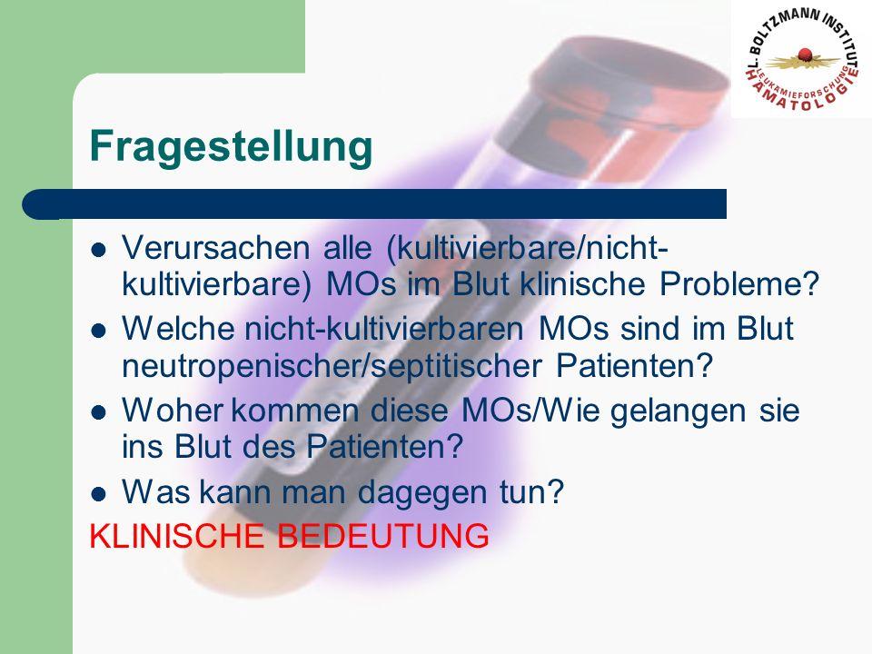Fragestellung Verursachen alle (kultivierbare/nicht-kultivierbare) MOs im Blut klinische Probleme
