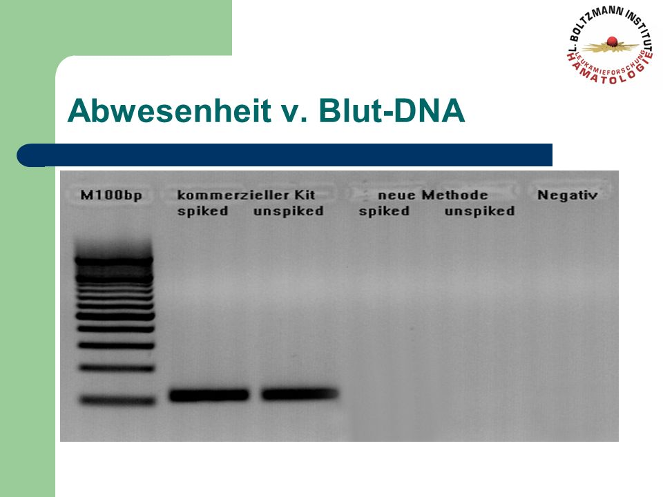 Abwesenheit v. Blut-DNA