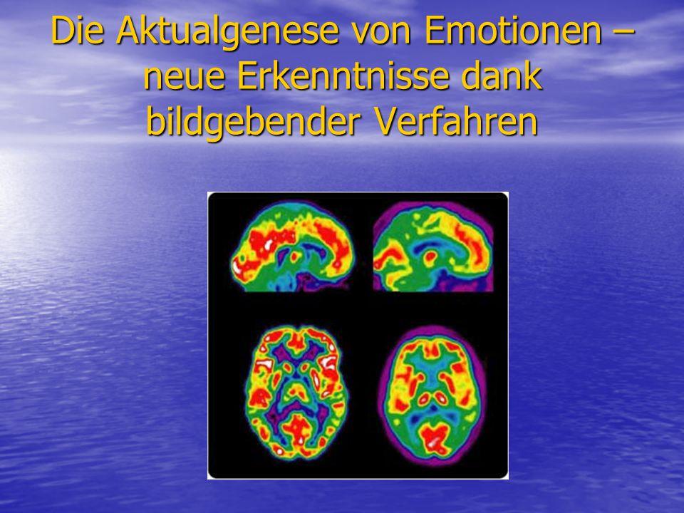 Die Aktualgenese von Emotionen – neue Erkenntnisse dank bildgebender Verfahren