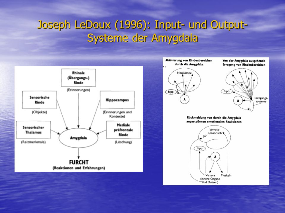 Joseph LeDoux (1996): Input- und Output-Systeme der Amygdala