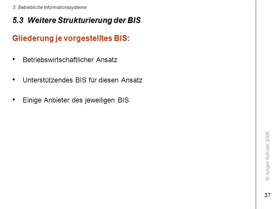 5.3 Weitere Strukturierung der BIS