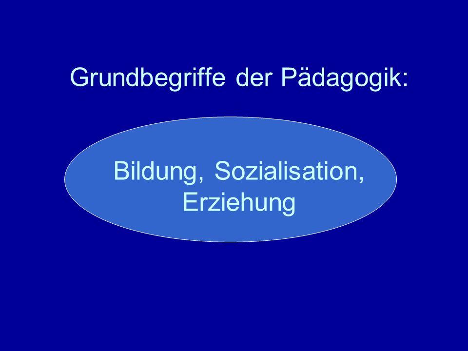 book die alternative für deutschland programmatik entwicklung und politische verortung