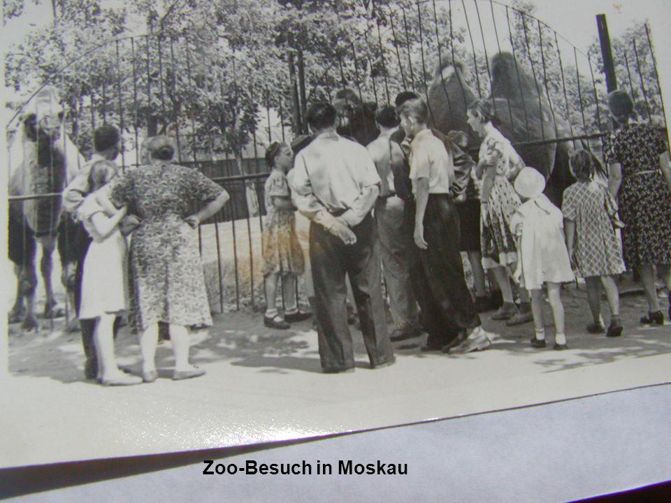 Tiergarten in Moskau Zoo-Besuch in Moskau