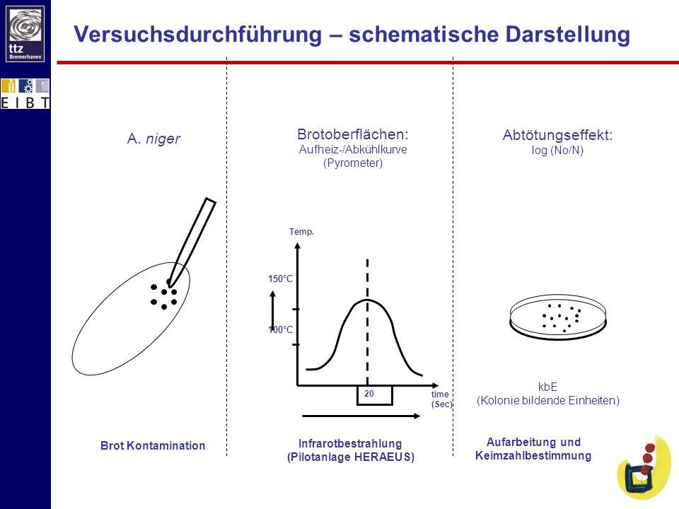 Versuchsdurchführung – schematische Darstellung