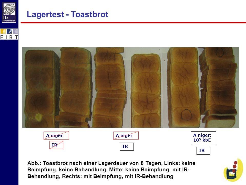 Lagertest - Toastbrot IR. A niger. A niger. IR. IR. A niger: 105 kbE.