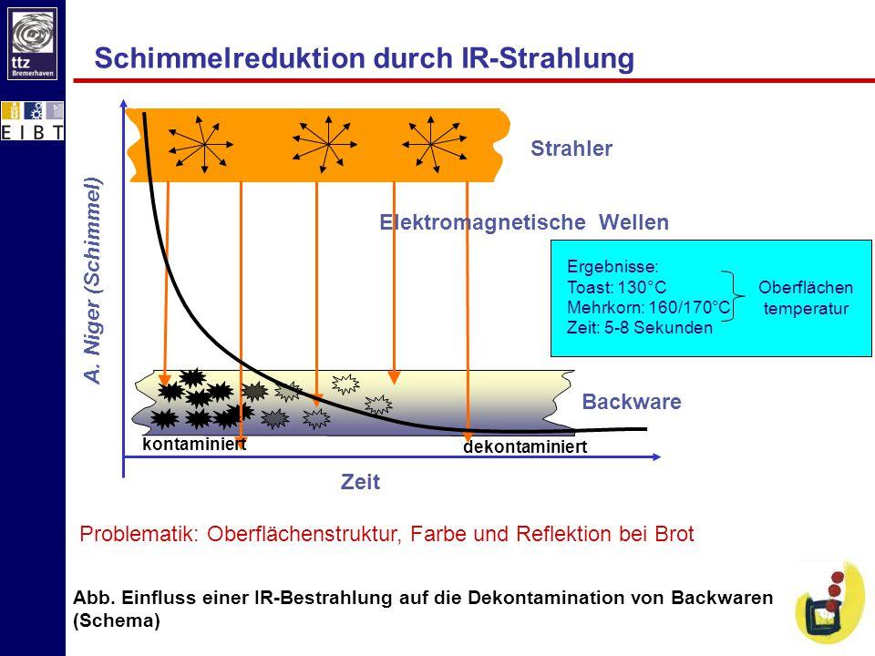 Schimmelreduktion durch IR-Strahlung