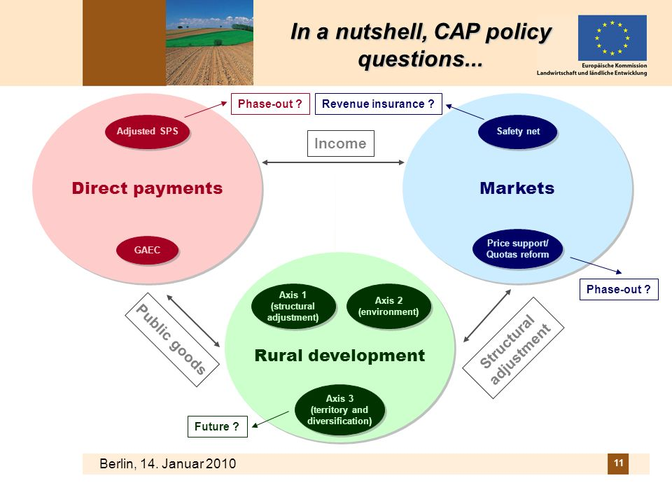 In a nutshell, CAP policy questions... Structural adjustment