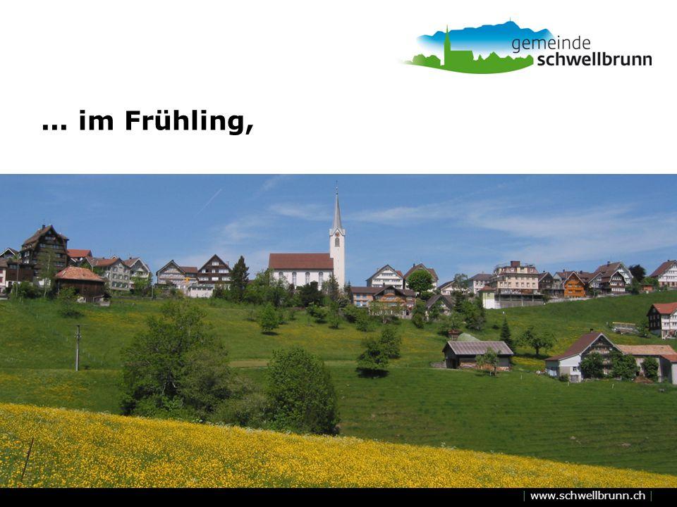 ... im Frühling,