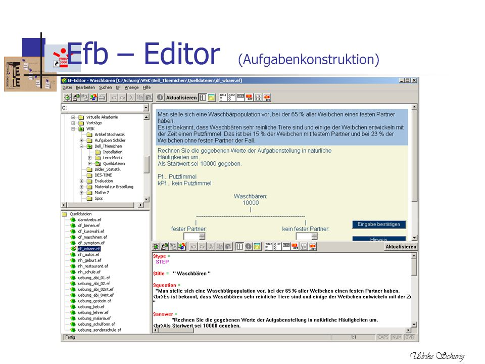 Efb – Editor (Aufgabenkonstruktion)