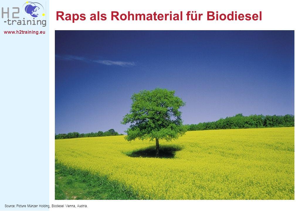 Raps als Rohmaterial für Biodiesel