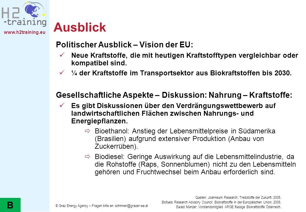 Ausblick B Politischer Ausblick – Vision der EU: