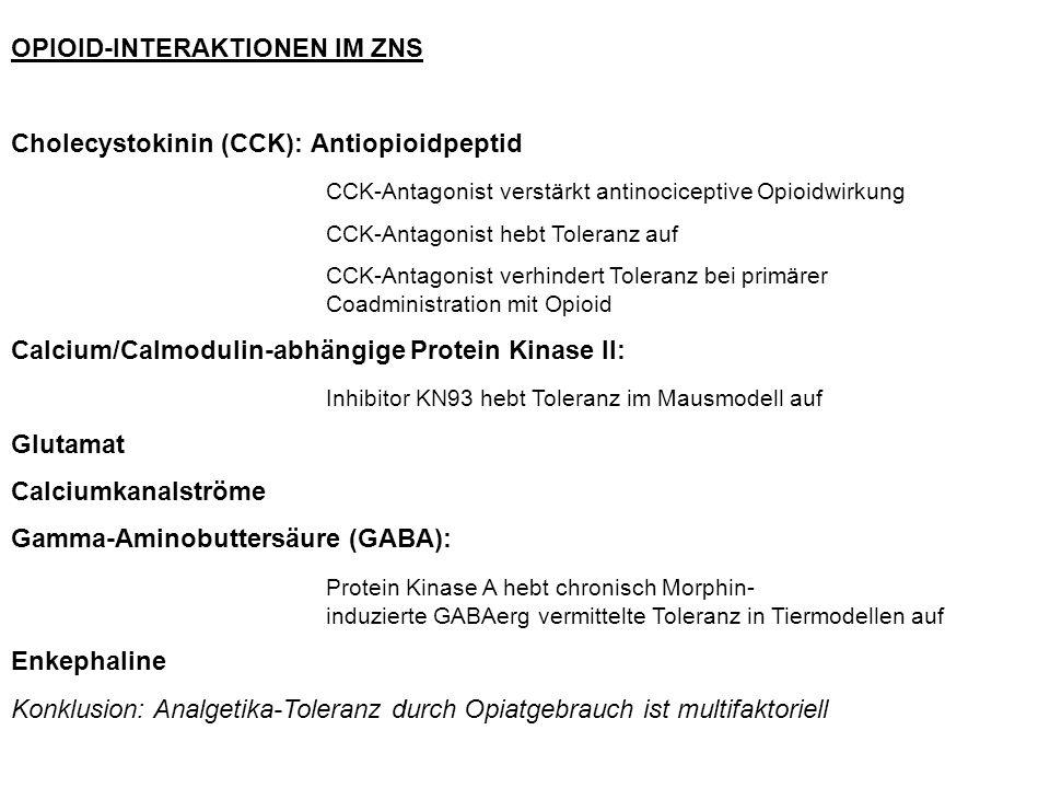 OPIOID-INTERAKTIONEN IM ZNS
