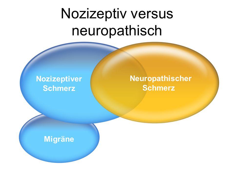 Nozizeptiv versus neuropathisch
