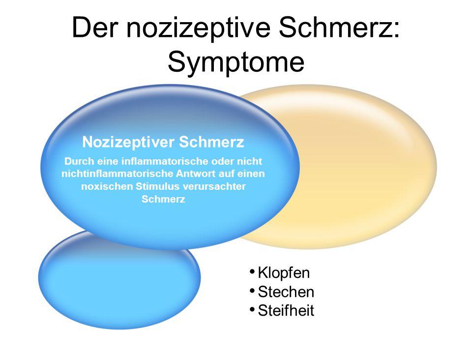 Der nozizeptive Schmerz: Symptome