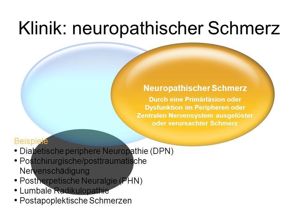 Klinik: neuropathischer Schmerz