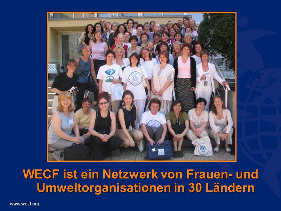 WECF ist ein Netzwerk von Frauen- und Umweltorganisationen in 30 Ländern