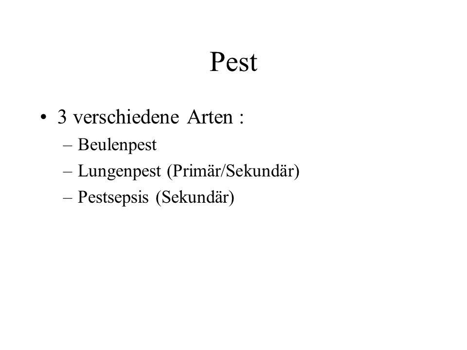 Pest 3 verschiedene Arten : Beulenpest Lungenpest (Primär/Sekundär)