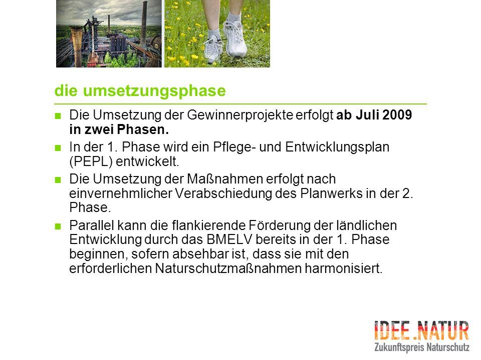 die umsetzungsphase Die Umsetzung der Gewinnerprojekte erfolgt ab Juli 2009 in zwei Phasen.