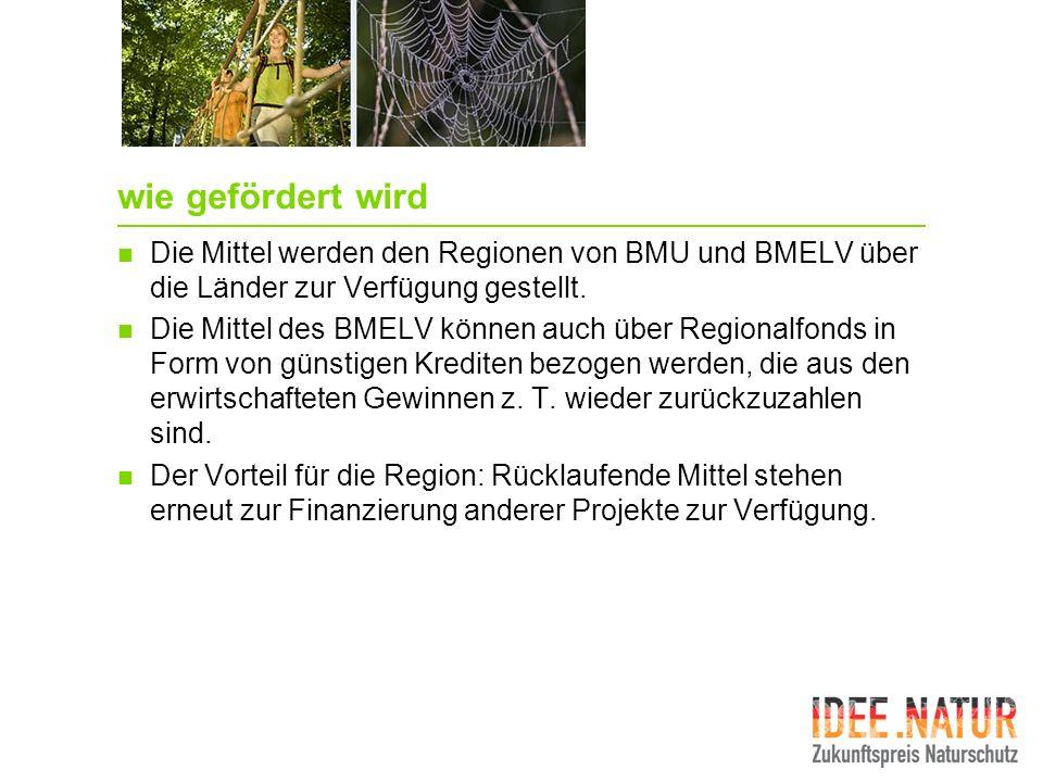wie gefördert wird Die Mittel werden den Regionen von BMU und BMELV über die Länder zur Verfügung gestellt.