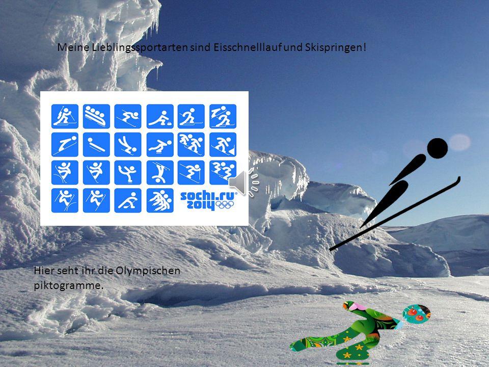 Meine Lieblingssportarten sind Eisschnelllauf und Skispringen!