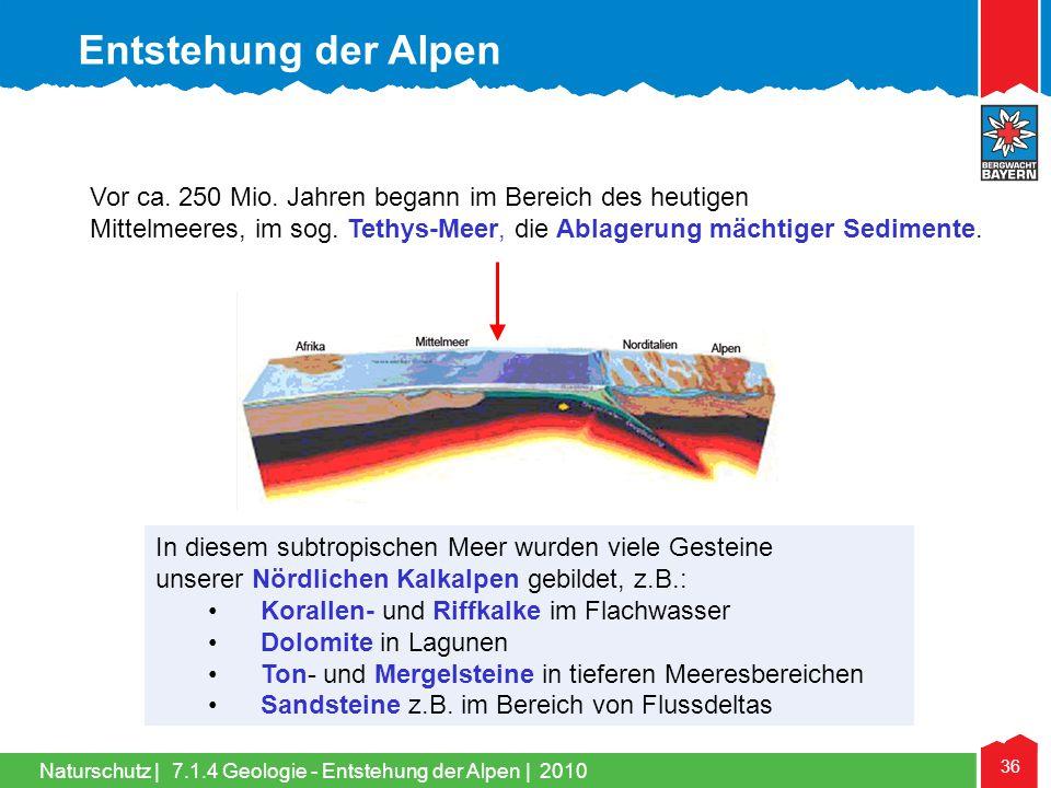 Entstehung der Alpen Vor ca. 250 Mio. Jahren begann im Bereich des heutigen. Mittelmeeres, im sog. Tethys-Meer, die Ablagerung mächtiger Sedimente.