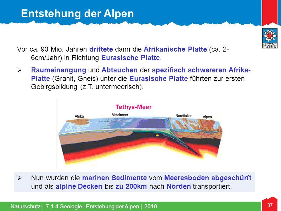 Entstehung der Alpen Vor ca. 90 Mio. Jahren driftete dann die Afrikanische Platte (ca. 2-6cm/Jahr) in Richtung Eurasische Platte.