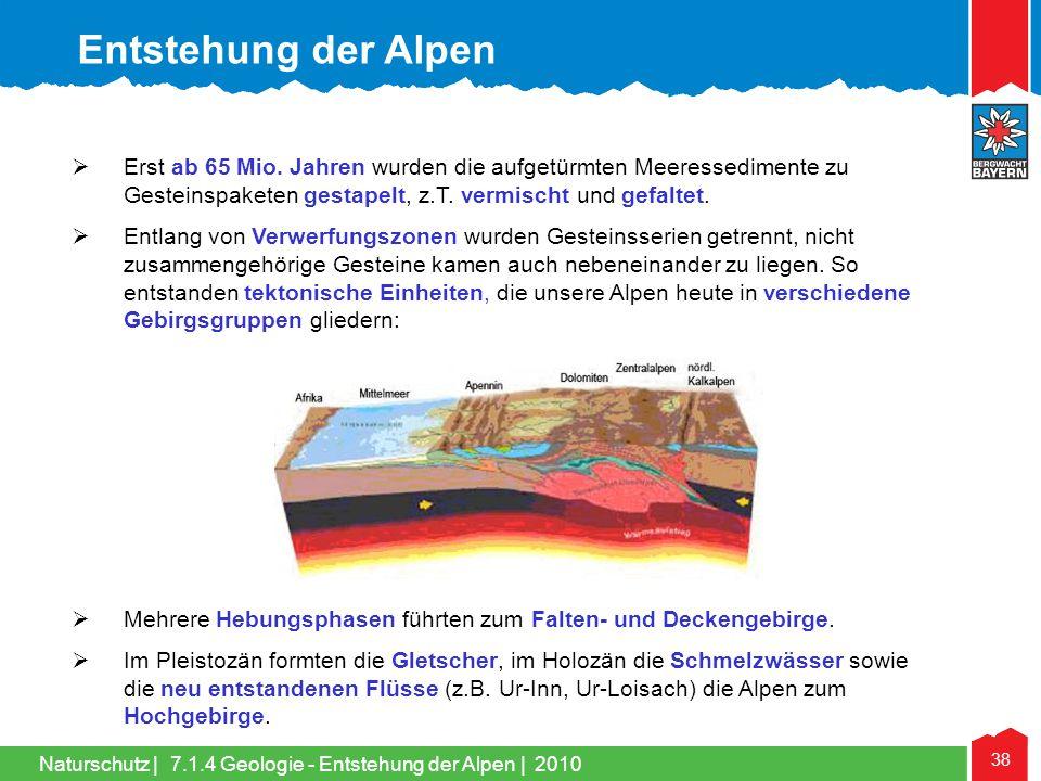 Entstehung der Alpen Erst ab 65 Mio. Jahren wurden die aufgetürmten Meeressedimente zu Gesteinspaketen gestapelt, z.T. vermischt und gefaltet.