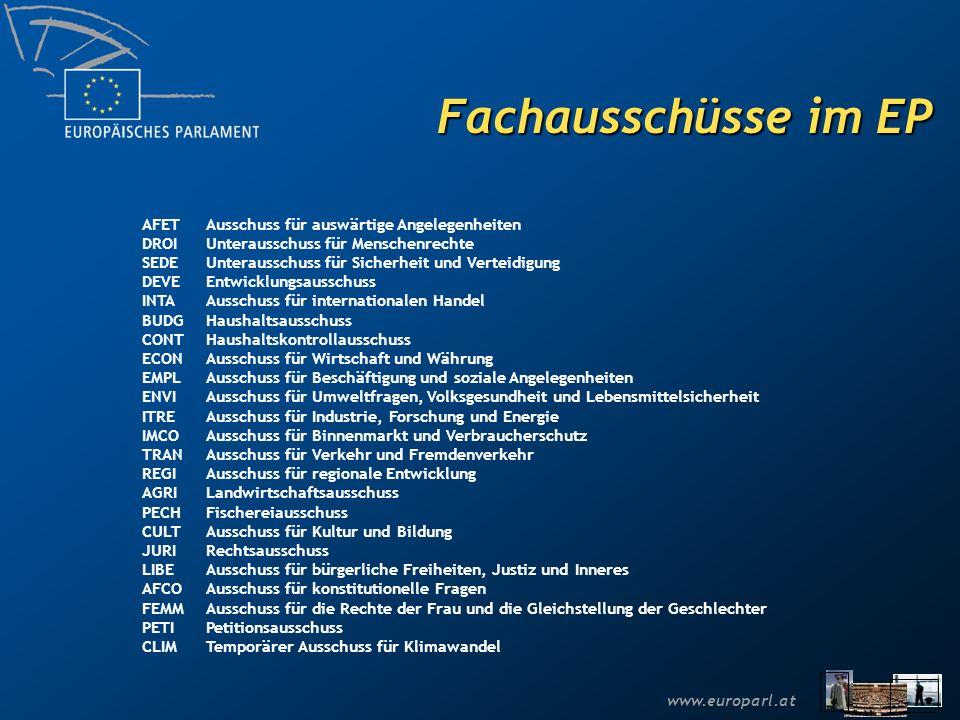 Fachausschüsse im EP AFET Ausschuss für auswärtige Angelegenheiten