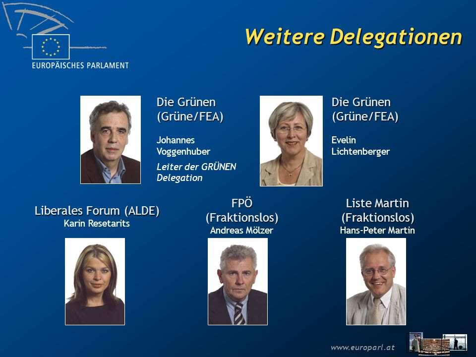 Weitere Delegationen Die Grünen (Grüne/FEA) Die Grünen (Grüne/FEA)