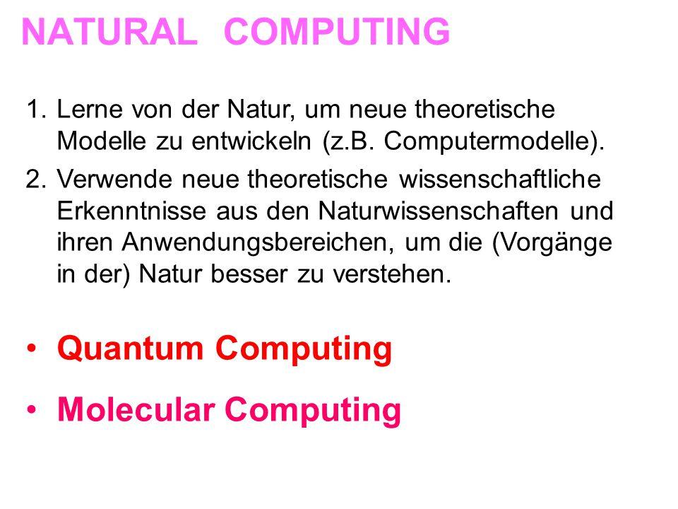 NATURAL COMPUTING Quantum Computing Molecular Computing