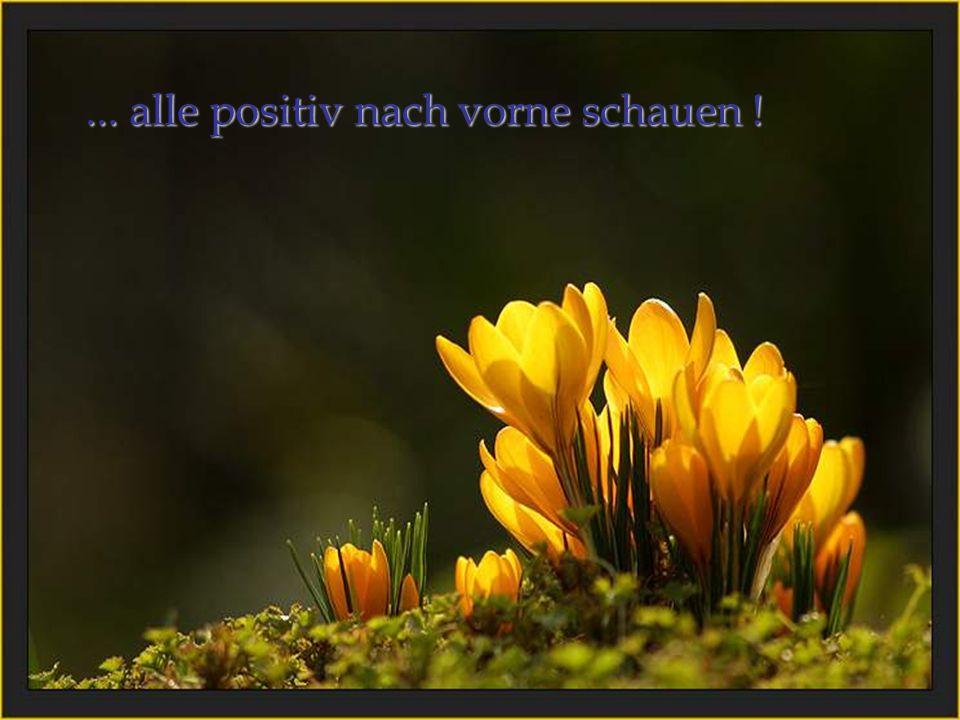 ... alle positiv nach vorne schauen !