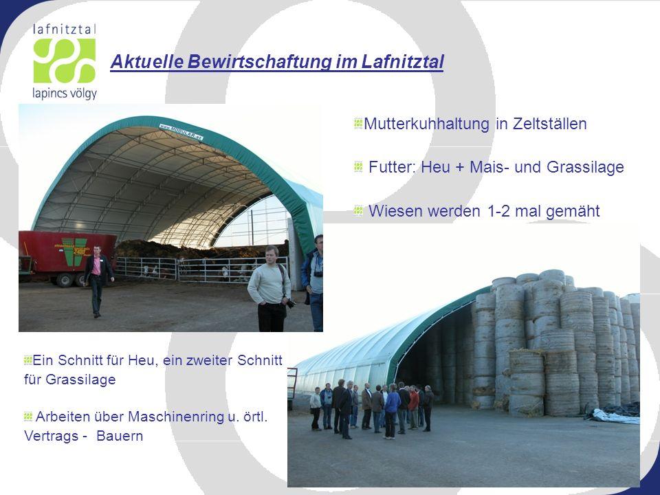 Aktuelle Bewirtschaftung im Lafnitztal