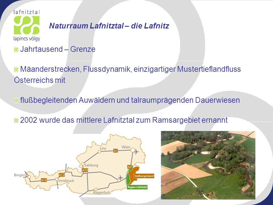 Naturraum Lafnitztal – die Lafnitz
