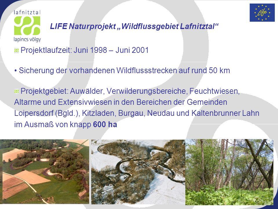 "LIFE Naturprojekt ""Wildflussgebiet Lafnitztal"