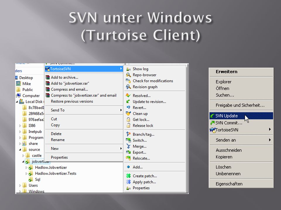 SVN unter Windows (Turtoise Client)
