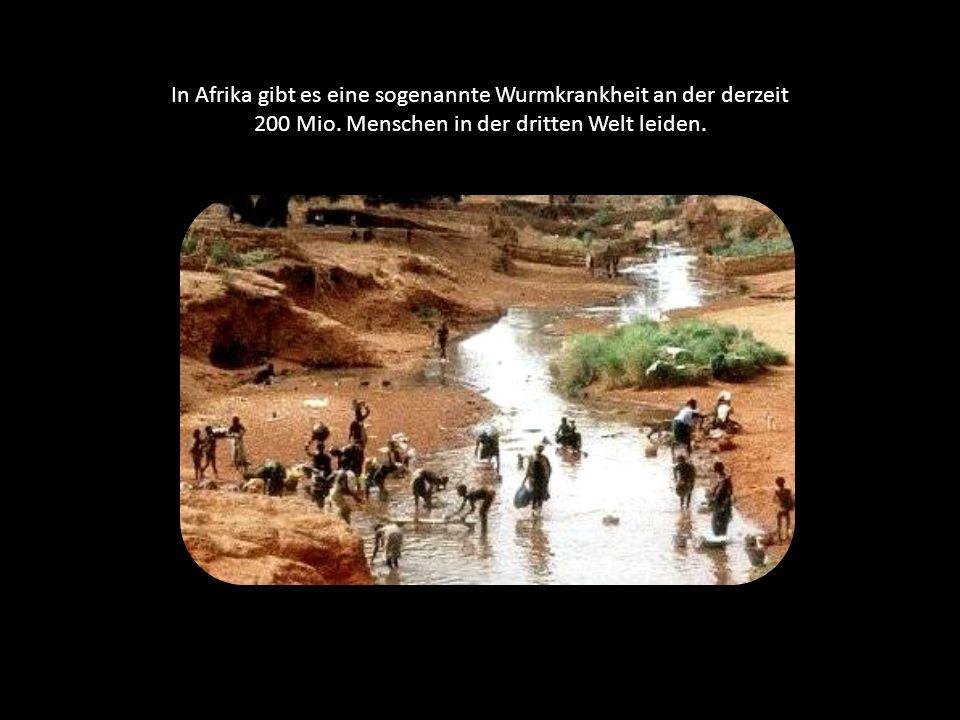 In Afrika gibt es eine sogenannte Wurmkrankheit an der derzeit