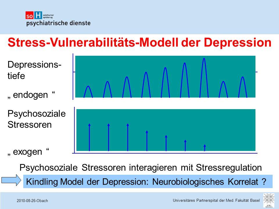 Stress-Vulnerabilitäts-Modell der Depression