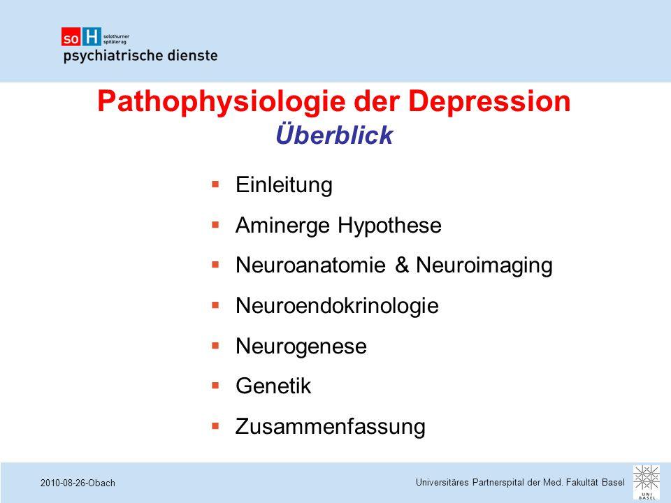 Pathophysiologie der Depression Überblick