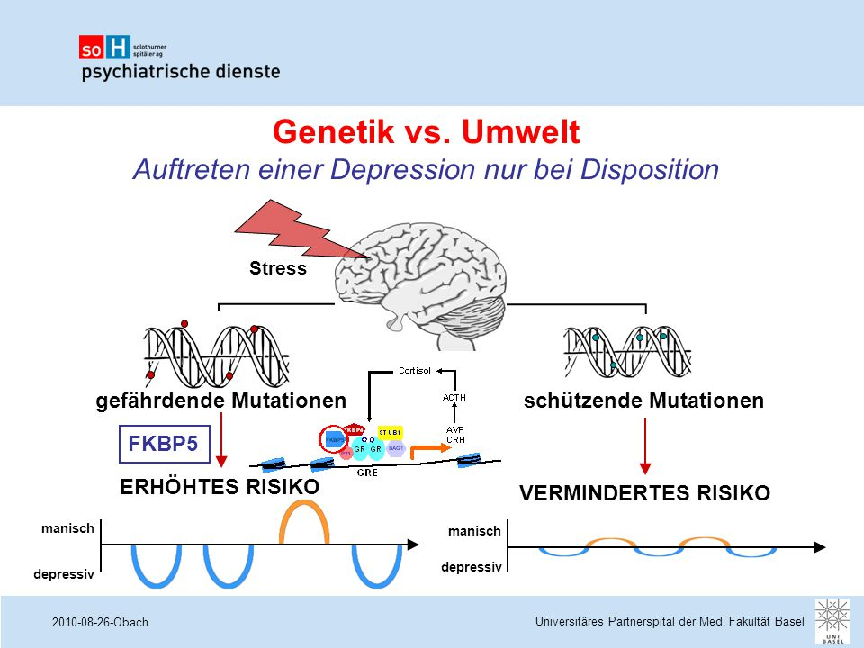 Genetik vs. Umwelt Auftreten einer Depression nur bei Disposition