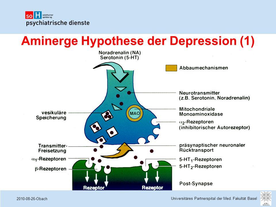 Aminerge Hypothese der Depression (1)