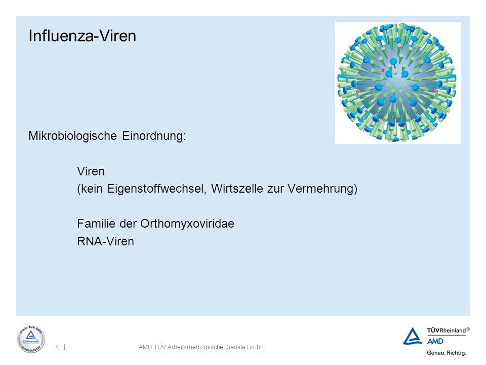 Influenza-Viren Mikrobiologische Einordnung: Viren