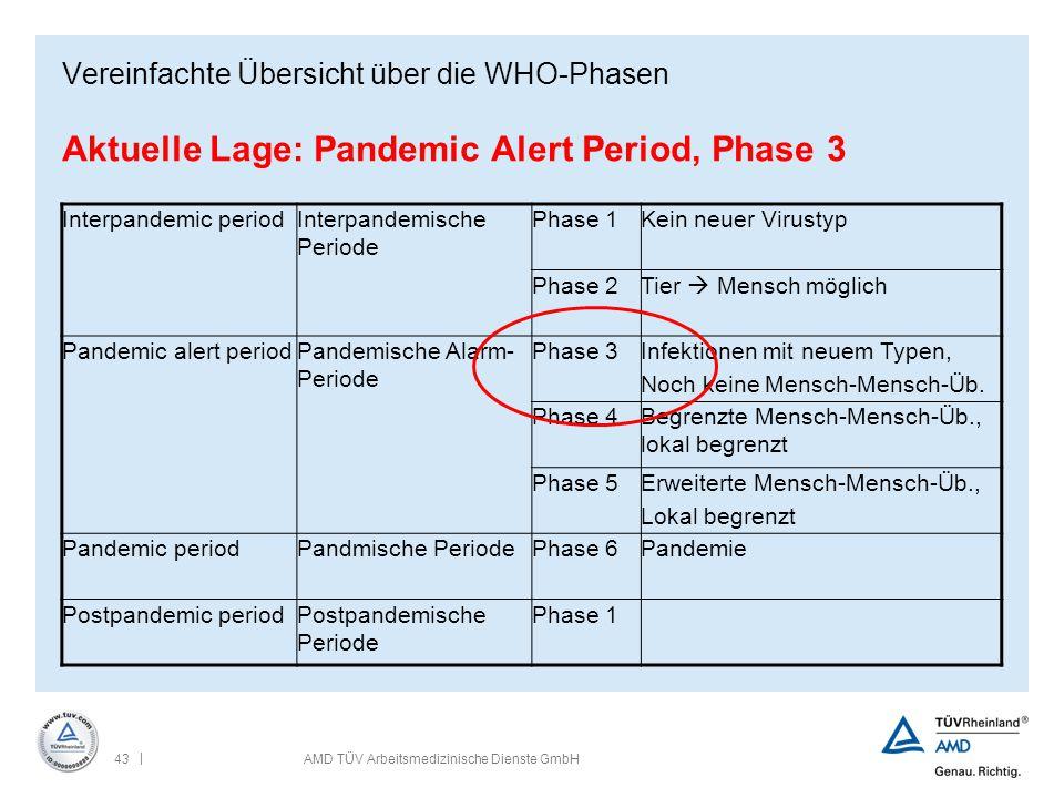Vereinfachte Übersicht über die WHO-Phasen Aktuelle Lage: Pandemic Alert Period, Phase 3